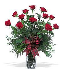 christmas-roses