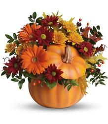 country-pumpkin