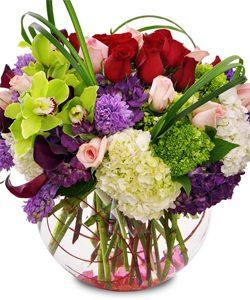 flowers-250