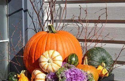 pumpkinplanters