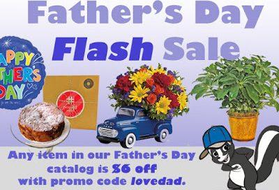 fathersdayflashsale