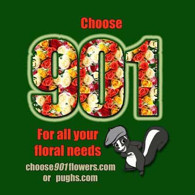choose901_edited-1