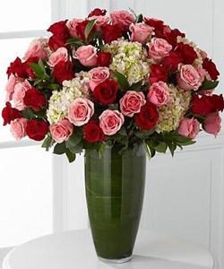 roses-250