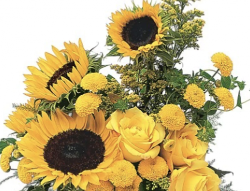 Celebrate the Beginning of Summer on June 21st with Seasonal Flowers and Plants
