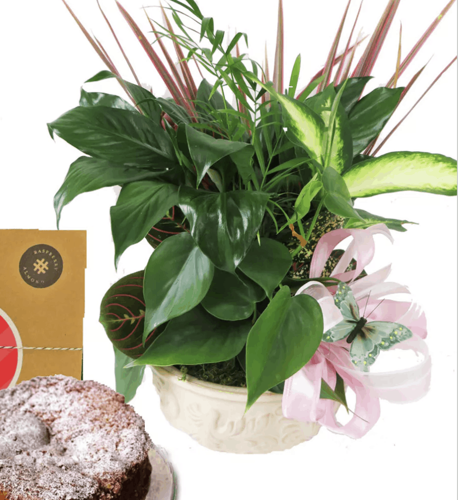 Supersize Thoughtful Gifts with Pugh's Affordable Package Deals