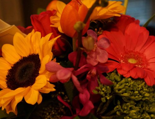 Add Style and Beauty to Thanksgiving with Pugh's Cutting-Edge Floral Designs