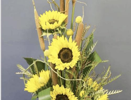 Summer Sunflower Sale!