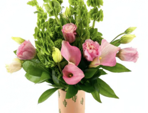 Enjoy the Arrival of Summer with Fresh Flowers and Seasonal Plants